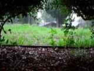 Sonido de Lluvia