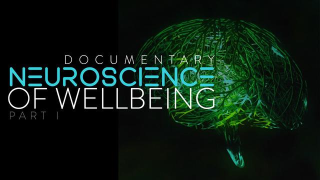 La neurociencia del bienestar. Parte I