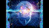Cerebro superdotado