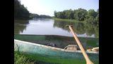 Drava, la naturaleza de un río
